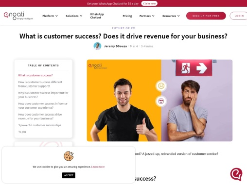 What is customer success? Does it drive revenue for your business?
