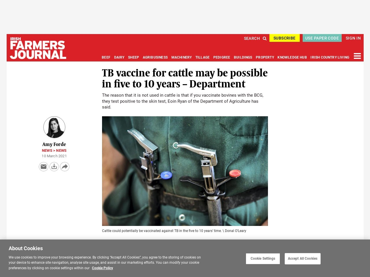 TB vaccine for cattle may be possible in five to 10 years – Department