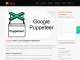 How to use Google Puppeteer in testing?