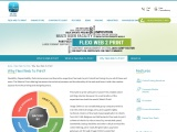 Web to Print Software and solution for online printing storefront why Flexi?