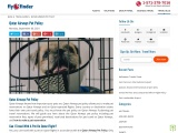 Qatar Airways Pet Policy And Fee