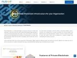 Private blockchain development   Fusion Informatics