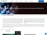 Bockchain development | Fusion Informatics