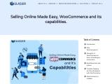 woocommerce build Ecommerce Store, WooCommerce Feature,