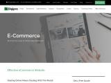 Ecommerce Website Design Agency