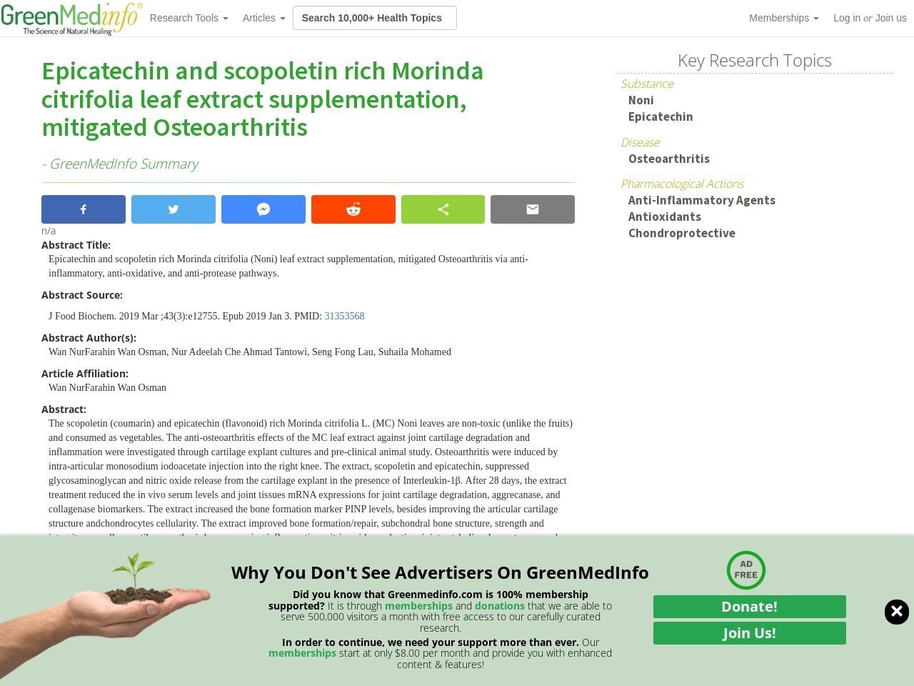 Epicatechin and scopoletin rich Morinda citrifolia leaf extract supplementation, mitigated Osteoarthritis