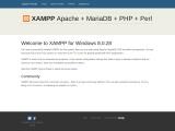 Hanika Bag Pillow in Singapore | Luxury Bags Shaper & Organizer