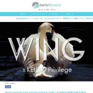 WING(AFFINGER5/AFFINGER5EX)の世にも奇妙な真夏の強力無比アップデート - インフォレビュー(INFOREVIEW)