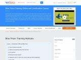 Blue Prism Certification Training Course Online