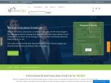 Buy The Best M-Level Executives Email Addresses | M-Level Database List