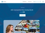 Inky Deals Coupon Codes