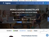Hire Expert Virtual employee services