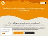 seo expert specialist   seo services provider agency company canada