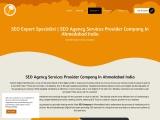 seo expert specialist seo services provider agency company india