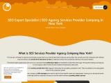 seo expert specialist   seo services provider agency company New York