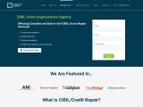 cibil score improvement agency