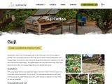 guji coffee exporters ethiopia | guji coffee ethiopia