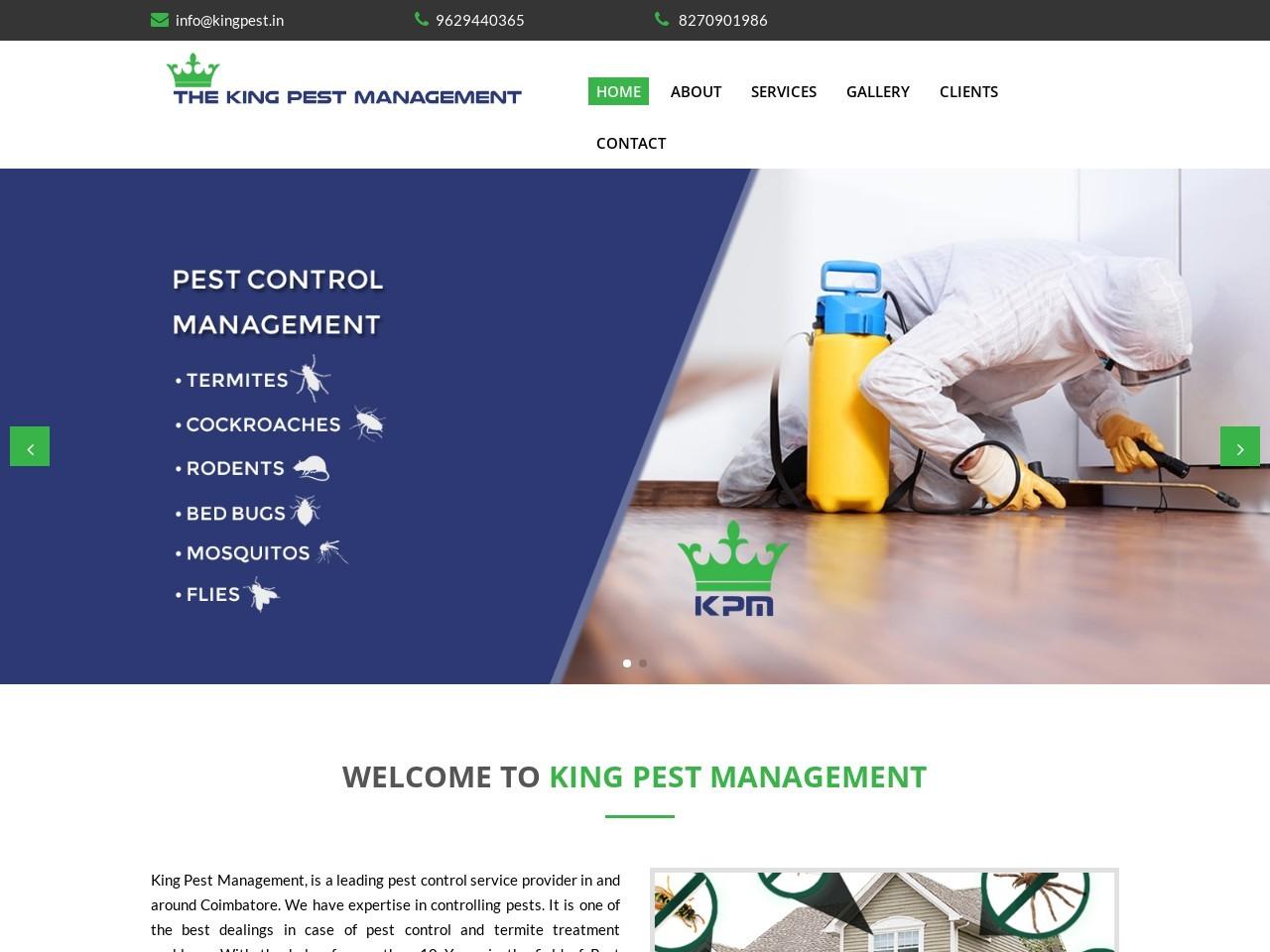 pest control solutions | Pest Control
