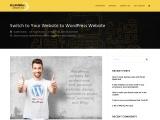 Switch to Your Website to WordPress Website