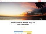 Best WordPress Themes – Why Are They Important?