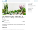 Select Best Low Maintenance Office Plants – Decor La Rouge – Interior Design Agency