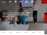 Mammoth-AI LLC Software Testing Company