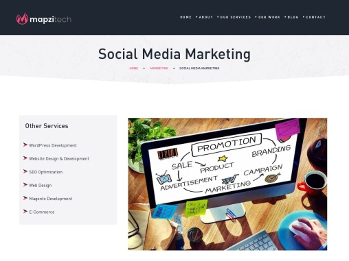 Social Media Marketing Company in Noida