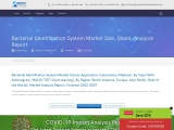 Bacterial Identification System Market Size