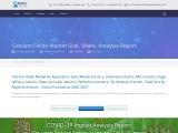 Calcium Oxide Market Share