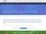 Cellulite Treatment Market Share