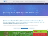 Enzymatic Sponge Market Share