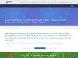 EVA Copolymer Resin market share