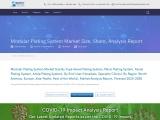 Modular Plating System Market Share