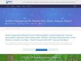 Global Sodium Hypophosphite market report covers various regions including North America, Europe, As