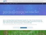 Sternum Saw Blades Market Share