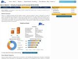 Global Boron Market: Industry Analysis