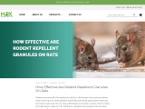 Best Mouse and Rat Repellent for Your Home — MDX Concepts