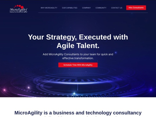 Strategy Execution Consulting – Strategy Implementation | MicroAgility