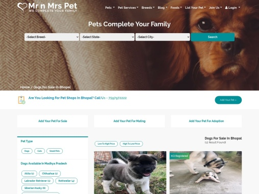 Buy Healthy Dogs & Puppies for Sale in Bhopal- Mr n Mrs Pet