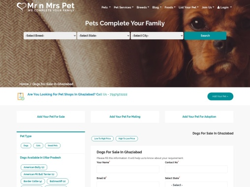 Buy Healthy Dogs & Puppies for Sale in Ghaziabad – Mr n Mrs Pet