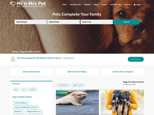 Buy Healthy Dogs & Puppies for Sale in Kochi – Mr n Mrs Pet