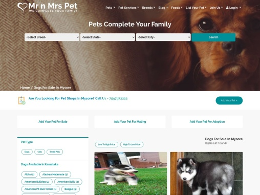 Buy Healthy Dogs & Puppies for Sale in Mysore- Mr n Mrs Pet
