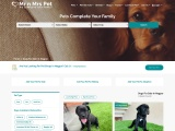 Buy Healthy Dogs & Puppies for Sale in Nagpur – Mr n Mrs Pet