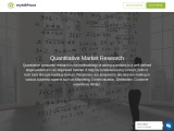 How does Quantitative Market research work?
