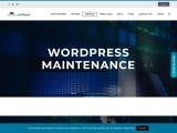 WordPress Website Maintenance Services | Fast & Affordable | myWPguys