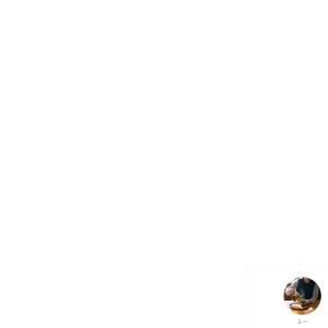 都電荒川線で行く東京下町さんぽ & 映画『天気の子』の聖地!JR田端駅 すっきり、さっぱり。