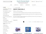 hermit crab shells – North Florida Shells