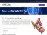 Pancreas Transplant in Pune | Pancreas Specialist Doctor in Pune