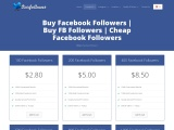 How important to buy Facebook Followers for Business
