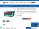 Batch Weighing System Manufacturer